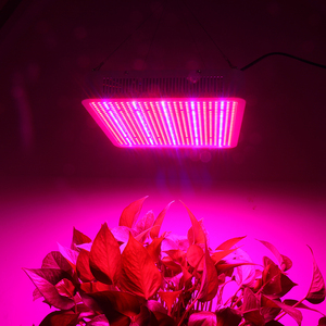 Image 5 - 400W 600W 800W Full Spectrum LED Grow Lights Led Plant Lamp For Greenhouse Grow Tent Vegetables Growth Flowering 110V 220V