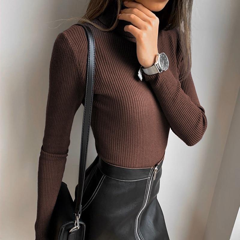 Brown Bodysuit (12)