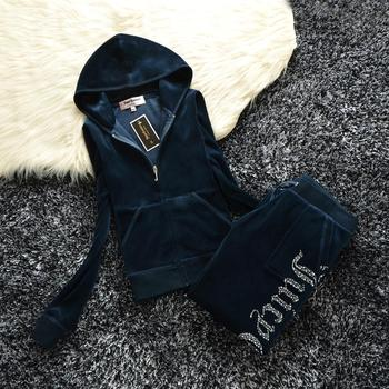Spring/Fall 2021 Women's Brand Velvet Fabric Tracksuits Velour Suit Women Track Suit Hoodies And Pants fat sister sportswear image