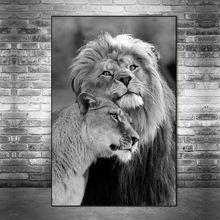 Африканские Дикие Львы lover холст настенные картины Искусство