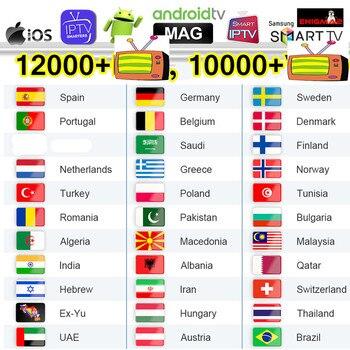 PTV Arabic Belgium Germany IPTV Spain Italy Dutch Qatar IPTV Algeria Morocco UAE IP TV Android M3u pk QHDTV No APP Include цена 2017