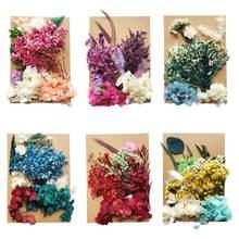 Хрустальный эпоксидный наполнитель сухие цветы смешанные наклейки