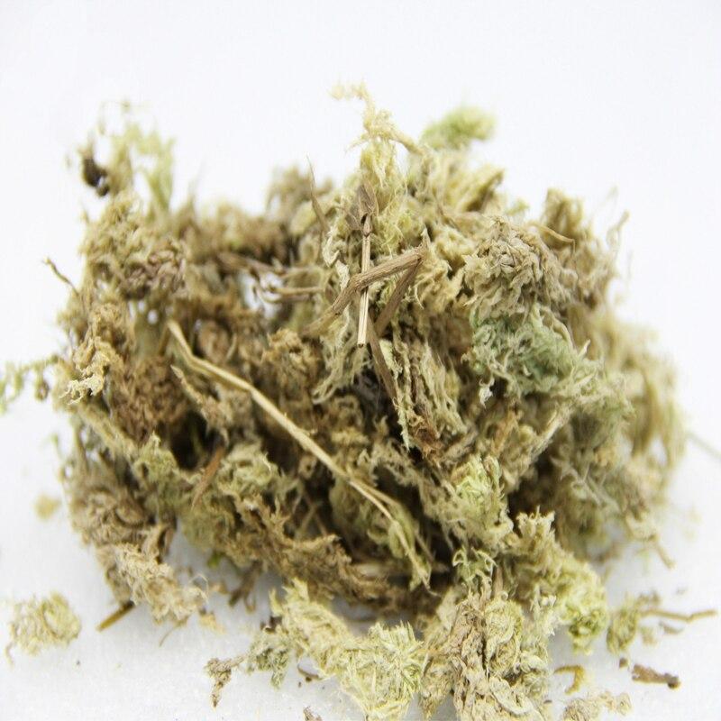 10G/bag Diy Sphagnum Moss Garden Supplies Sphagnum Moss Moisturizing Nutrition Organic Fertilizer For Phalaenopsis Orchid Musgo