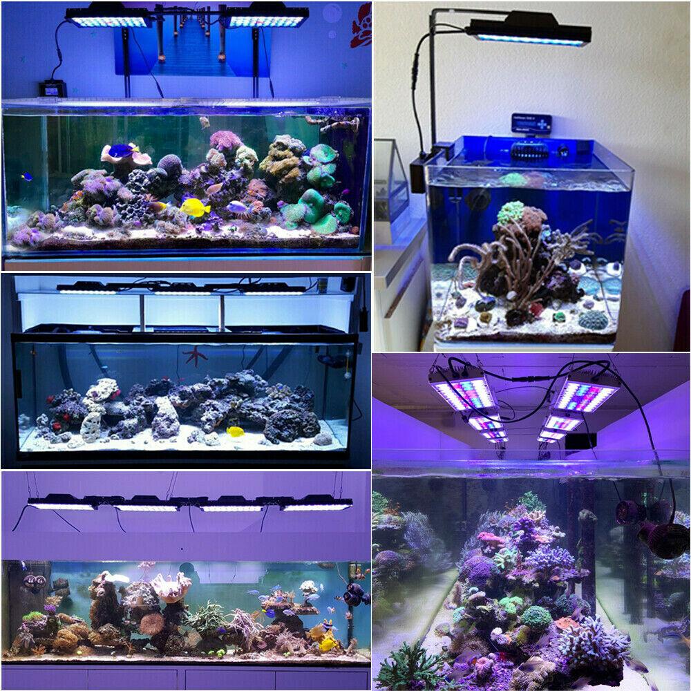 PopBloom Led Aquarium Lampe Marine Aquarium Lichter Riff Aquarium Aquarium Licht Beleuchtung Led Licht für Aquarium Tank - 2
