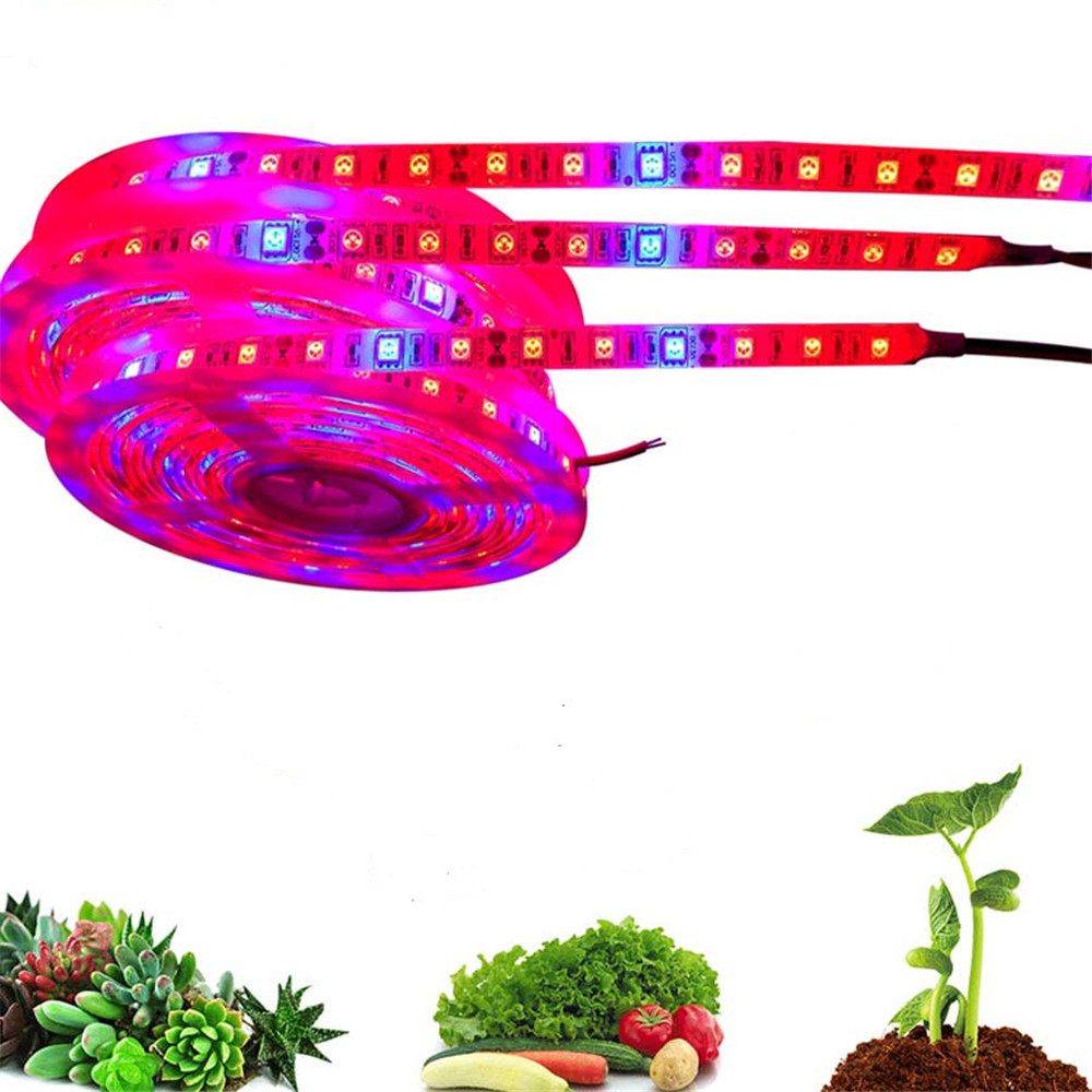 Led Grow Light Strip 5M 5050 Full Spectrum Flower Plant Phyto Growth Lamp For Indoor Greenhouse Hydroponic Grows Lights 12V Tent