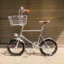 Bicicleta de 20 pulgadas, bicicleta de marcha única Retro para mascotas, bicicleta fixie, marco de bicicleta vintage plateado, mini vinbicycle con cesta plateada
