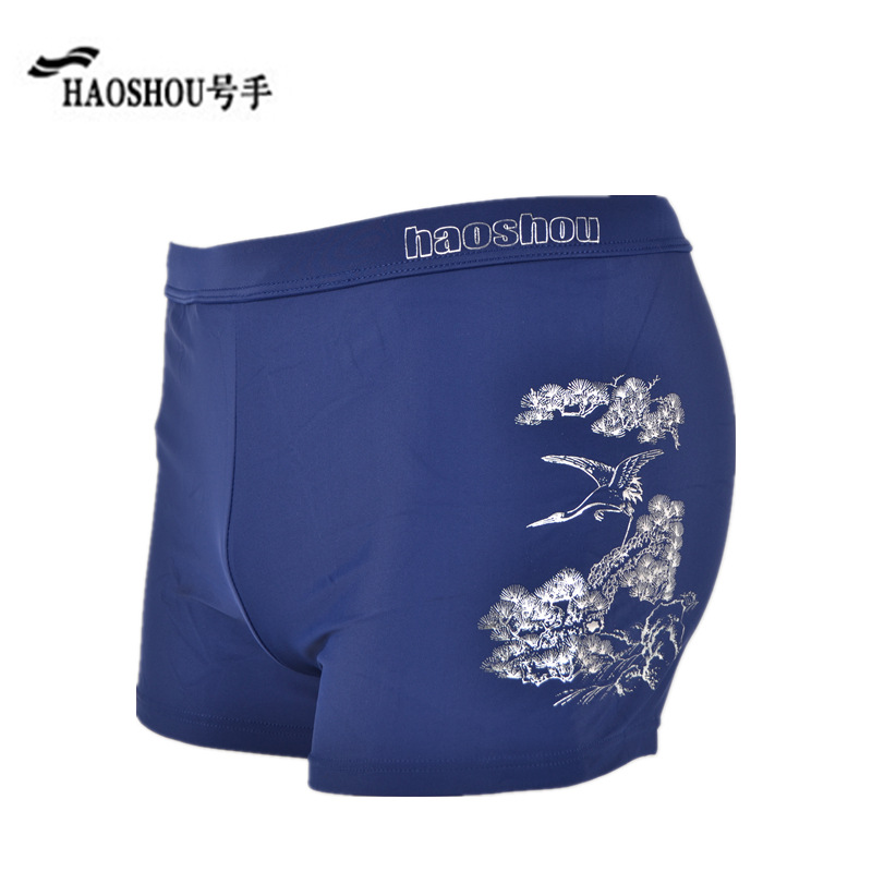Special Offer HaoShou Swimming Trunks MEN'S Boxers Europe And America Fashion Beach Shorts Large Size Leveling Feet Hot Springs