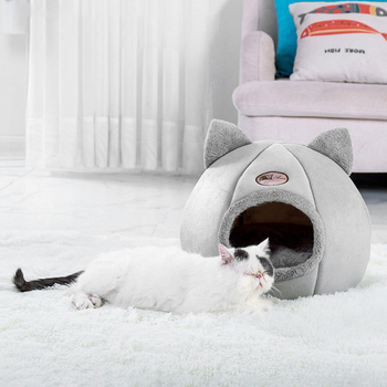 Cat Bed  1
