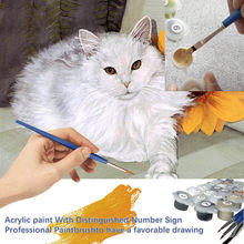 New Acrylic Paint With Distinguish Numbers Diy Painting Kit Coloring By Numbers Picture By Numbers Cute Cat Arts And Crafts(China)