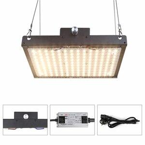 Image 2 - Lượng Tử Đèn LED Phát Triển Đèn Ban Suốt Samsung Lm301b 140W 300W Vật Có Hoa Lớn Đèn Trong Nhà Thực Vật Với meanwell Lái Xe