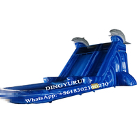 Customized design dolphin inflatable slide water slide with pool