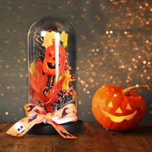 Halloween Decorations Cover Lights Pumpkin Light for Christmas Party