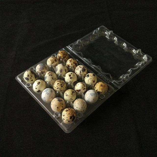 50 個 20 グリッドウズラ卵トレイプラスチック透明卵ディスペンサーホルダー卵容器包装ボックス