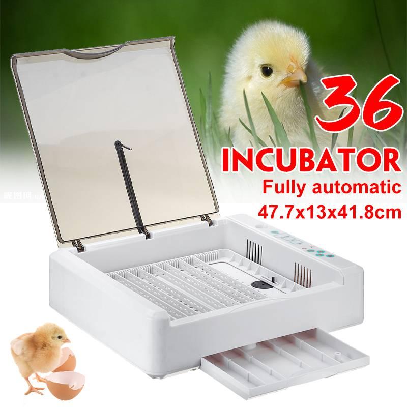 36 Egg Hatchery Incubator Farm Brooder Machine Electronic Automatic Incubator Tools for Chicken Duck Egg Bird Quail Brooder