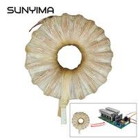 SUNYIMA 1pc Power Frequency Pure Sine Wave Inverter Toroidal Transformer DC 24V 36V 48V 1000/3000/5000/6000W Inverter For DIY