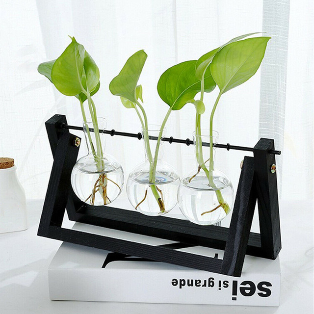Hydroponic Glass Planter Bulb Vase with Wooden Stand Tray Tabletop Desk Decor Water Planting Propagation Home Decoration BJStore 2