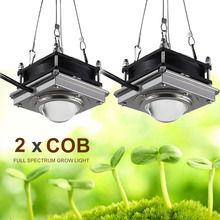 2pcs COB Led 성장 빛 150W Phyto 램프 식물에 대 한 전체 스펙트럼 실내 LED 램프 꽃 묘목에 대 한 상자 텐트 성장 발아