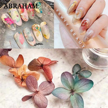 Nail Art Dry Flower Decoration Manicure DIY Crafts Flower Sticker 3D Natural Flower Petals Set for Nail Tips Jewelry Making 3d nail art fimo soft polymer clay fruit slices cartoon for nail manicure sticker cell phones diy designs wheel decoration czp35