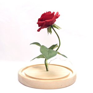 Image 5 - دروبشيبينغ الحفاظ على زهرة الورد الجمال والوحش الأحمر ارتفع في الزجاج قبة قاعدة خشبية مع LED ضوء ديكور المنزل