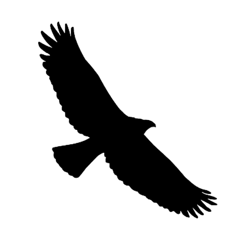 9*10CM TRIBAL EAGLE BIRD Cartoon Reflective Car Stickers And Decals Motorcycle Car Styling Black/Silver C2-0160