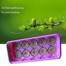 Seedling Box Seed Planting Special Tray 9/10/12/15 Hole Nursery Pot Household High Germination Rate