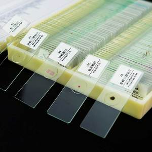 Image 4 - 100PCS Professional Glass Slice Prepared Microscope Slides Educational Specimen Human Tissue Sections with Plastic Box