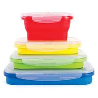 Thin Bins Collapsible Containers Set of 4 Silicone Food Storage Containers BPA Free, Microwave, Dishwasher and Freezer Safe