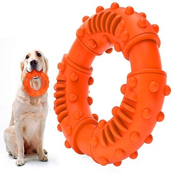 Puppy Teething Chew Toy 1