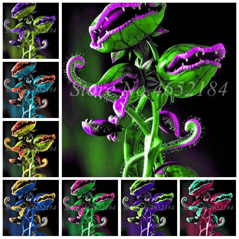 150 Pcs Potted Insectivorous Plant Bonsai Dionaea Muscipula Giant Clip Venus Flytrap Planta For Home Garden
