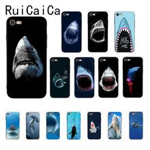 Ruicaica ocean Whale Sharks fish Black TPU Soft Silicone Phone Case Cover for iPhone 5 5Sx 6 7 7plus 8 8Plus X XS MAX XR 10(China)