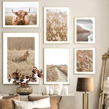 Хайленд корова лисица поле трава Луг туман пляж скандинавский