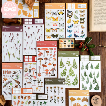Mr.Paper 16 Designs Natural Story Transfer Printing Stickers Transparent PVC Material Flowers Leaves Mushroom Plants - discount item  23% OFF Stationery Sticker