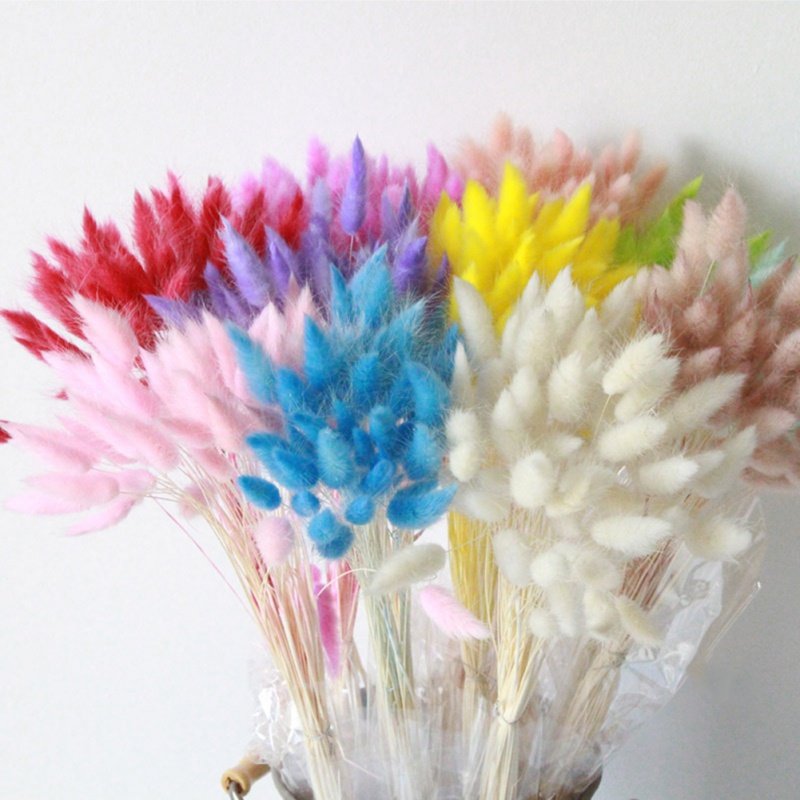 Party-Decorations Flower Rabbit-Tail-Grass Household Natural 30PCS Festive Dried Multi-Color title=