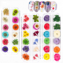 15 Styles Mix Dried Flowers Nail Decorations Jewelry Natural Floral Leaf Stickers 3d Nail Art Design Polish Manicure Accessories