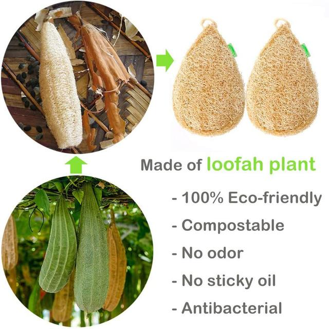 Eco Kitchen Sponge New Pure Handmade Multilayer Natural Loofah Scrubber Anti-oil Durable And Easy To Use Dish Cleaning Brush 3