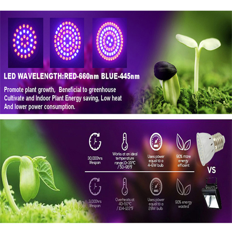E27 B22 E14 GU10 MR16 Plant Grow Light Lamp For Plant Home Garden Grow Light Led Led Full Spectrum Cob Led Grow Light Dropshop