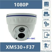 Caméra dôme IP micro intégrée Audio clair 2MP 1080P H.265 XM530 + F37 avec LED infrarouge IRC 42MIL ONVIF avec radiateur CMS XMEYE