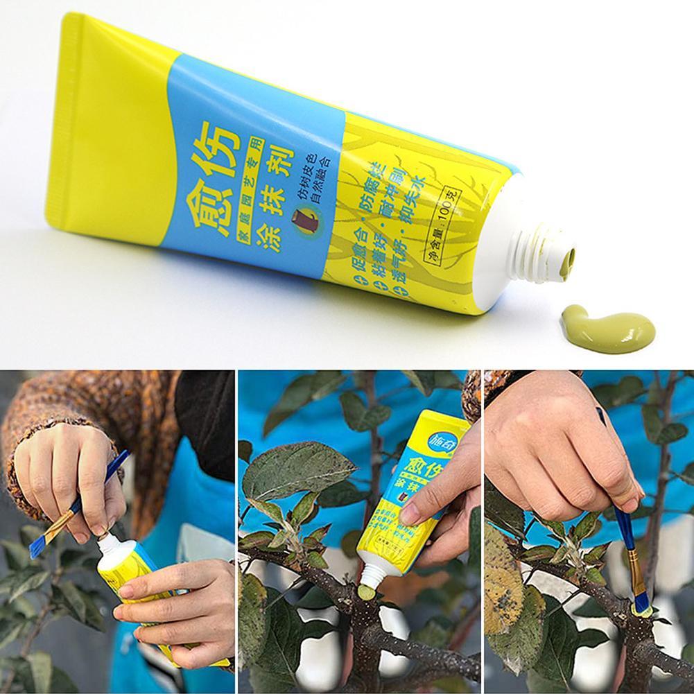 100g árbol herida bonsái corte pasta frotis agente poda compuesto sellador con cepillo Gel Exfoliante para mujeres, para acné, poros, minimalistas, exfoliante Facial, suave, 100g, hidratante, ZGOOD