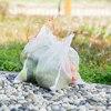 Fruit Protection Bag Meash 50pcs Storage Box Storage Useful Bags