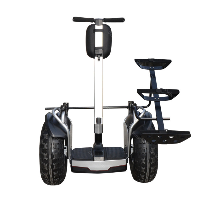 New Golf Electric Cart Two Wheeled Self Balancing Scooters With APP 19 Inch 1200W 60V Off Road Golf Electric Scooter For Adults  (1)