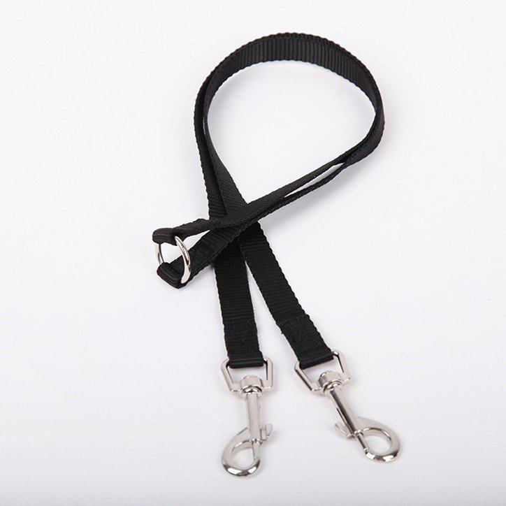 Dog One Plus Two Traction Belt Double-headed Rope 2-in-1 Double-ended Traction Rope Totoro Cat Squirrel Guinea Pig Double-headed