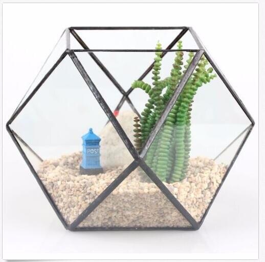 Verre géométrique Terrarium boîte bricolage présentoir table succulente Air plante fougère mousse Pot planteur - 4