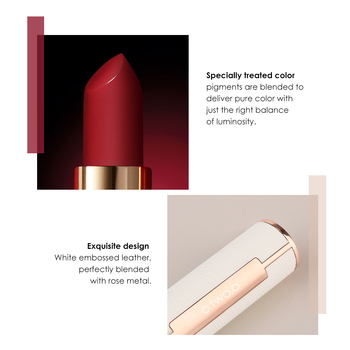 O.TWO.O Matte Lipstick Nude Brown Red Lips Makeup Velvet Silky Smooth Texture Long Lasting Waterproof Lip Stick 12 Colors 2