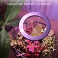 5V USB лампа для выращивания растений, с широким диапазонном 20 светодиодов рост светильник ing завода светать светильник для внутреннего Phytolamp ...