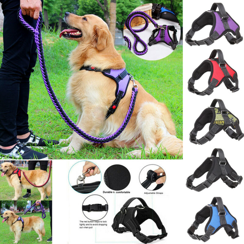 Reflective Breathable Soft Air Mesh Small Puppy Dog Vest Harness Leash Set US