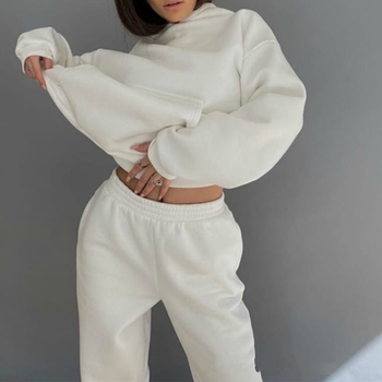 Tracksuits Women's Hoodie Pants Set Oversized Long Sleeve Sportwear Tracksuit Set 2020 Autumn Winter Suits On Fleece For Women image