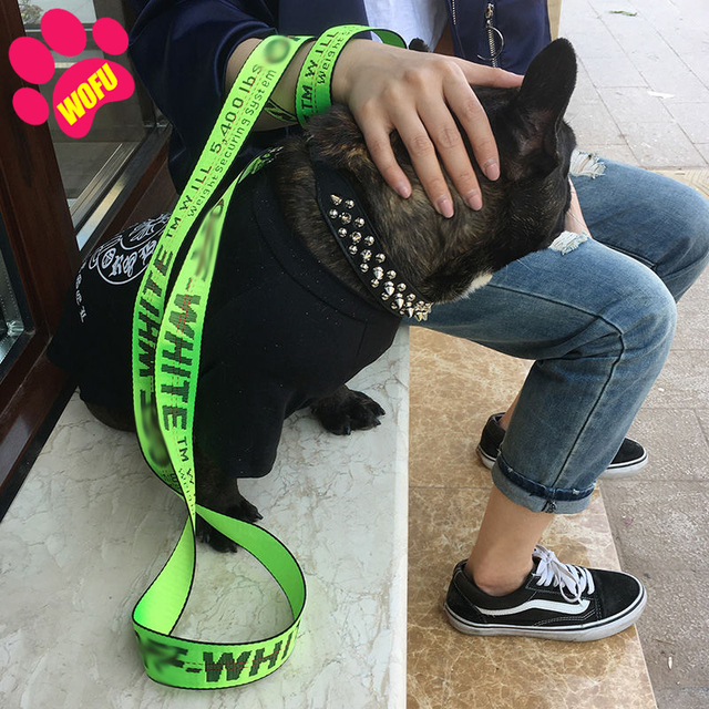 My Dogs Favorite Leash!  Durable - Washable - Comfortable 4