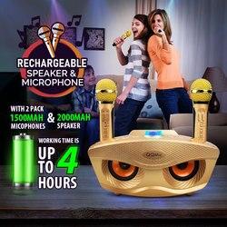 20W Karaoke Machine Draagbare PA Speaker Systeem Voor Kinderen Volwassenen Met Verlichting Microfoon Bluetooth V5.0
