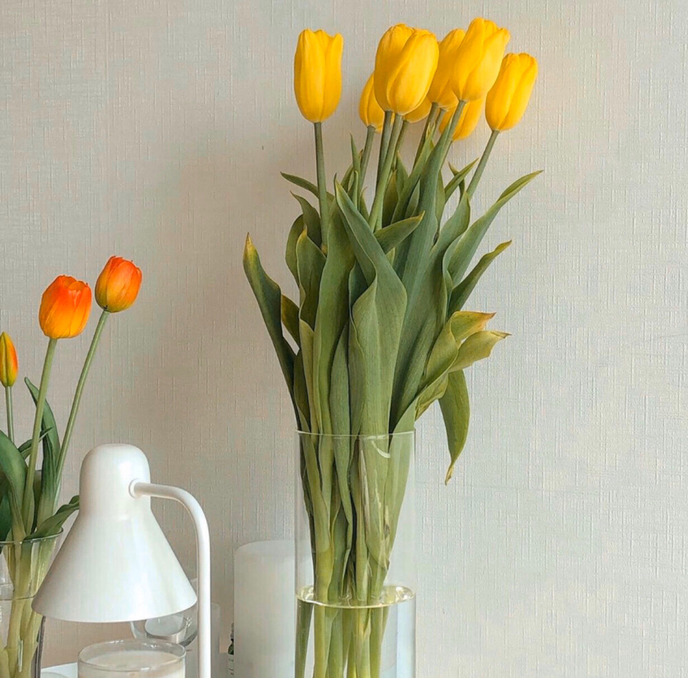 5Pcs Tulip Artificial Flower Real Touch Flower Fake Tulip Bouquet Garden Home Decorative Birthday Party Gift Wedding Decorations