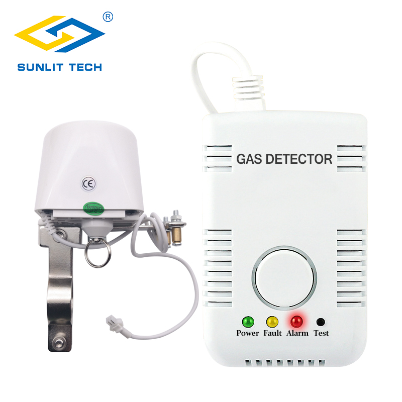 Good Quality LPG Gas Leak Detector Gas Alarm System With DN15 DN20 Manipulator Valve To Control Gas Pipe Off